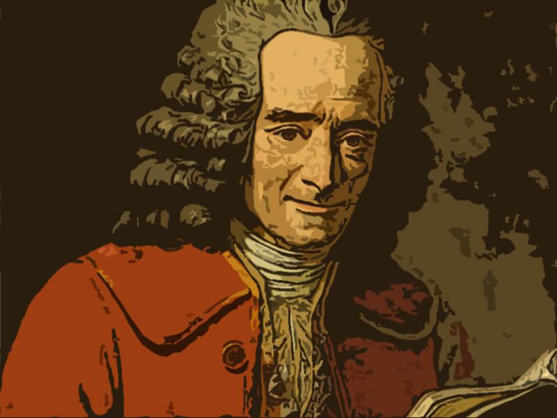 Frasi Voltaire Letteralmente Net